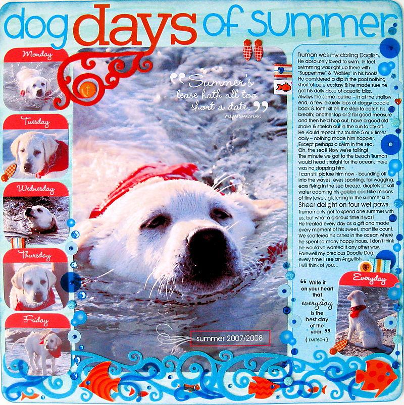 {dog days of summer}