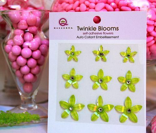 Twink-bloom-2